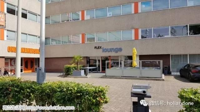 荷兰新闻短平快(德国孩子在荷兰营地被虐待等)— 7月22日