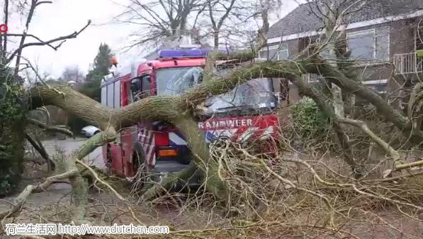 现场直播:全荷瘫痪!世纪飓风掀翻荷兰,红色警报发布!(多图)