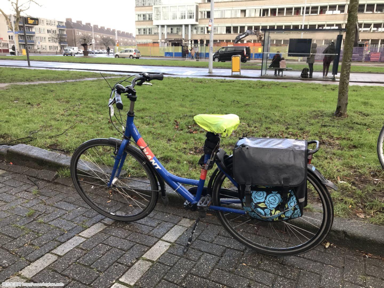 二手转让Giant自行车,阿姆斯特丹乌得勒支交易