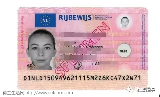 想去荷兰自驾游,怎么才能解决座驾问题?