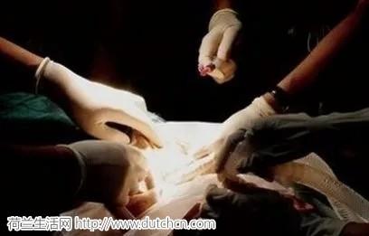 荷兰新法案:满18岁将被自动推定为器官捐献者