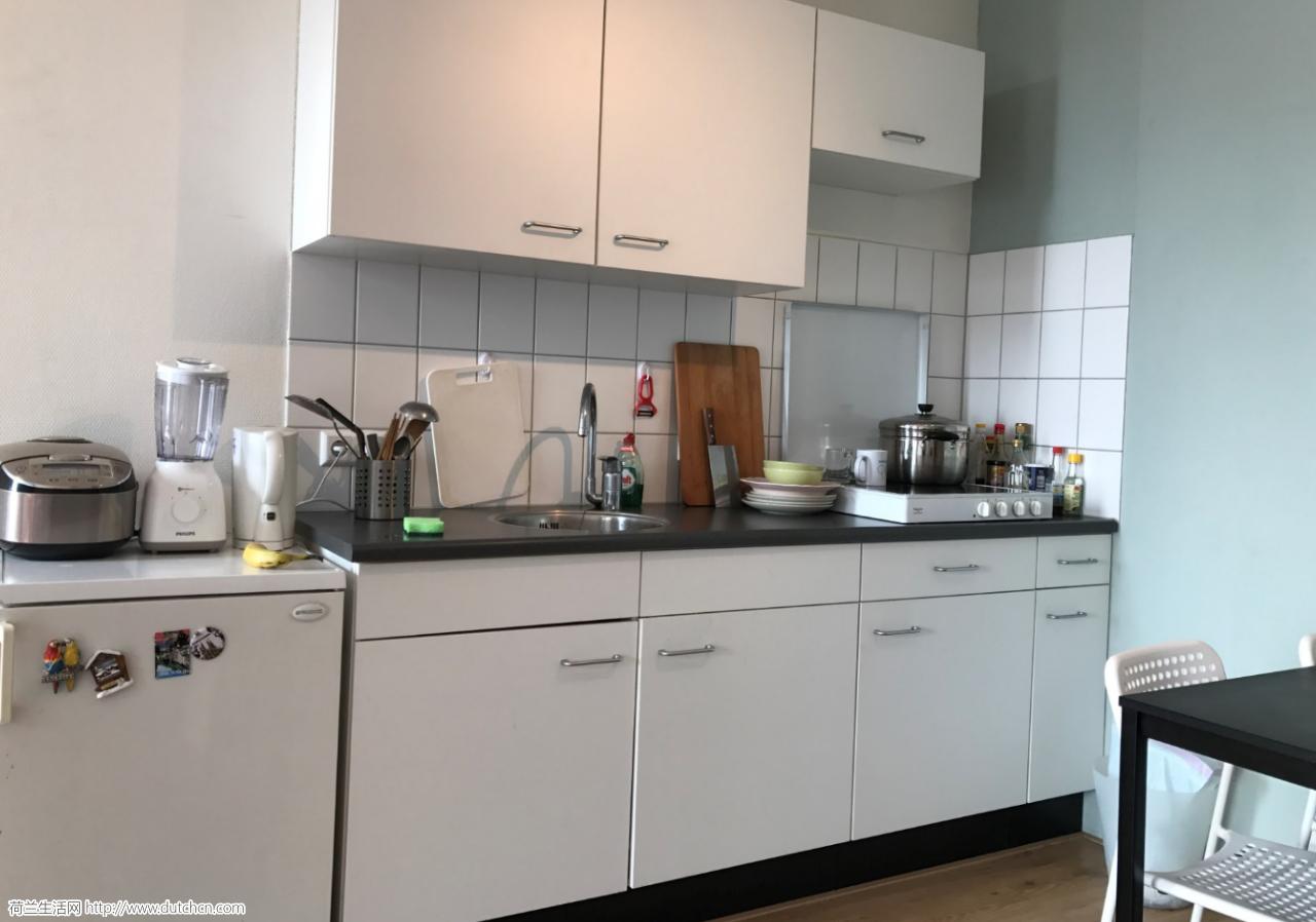 鹿特丹白桥 一室一厅公寓转租 700/月, 无押金,租期不限