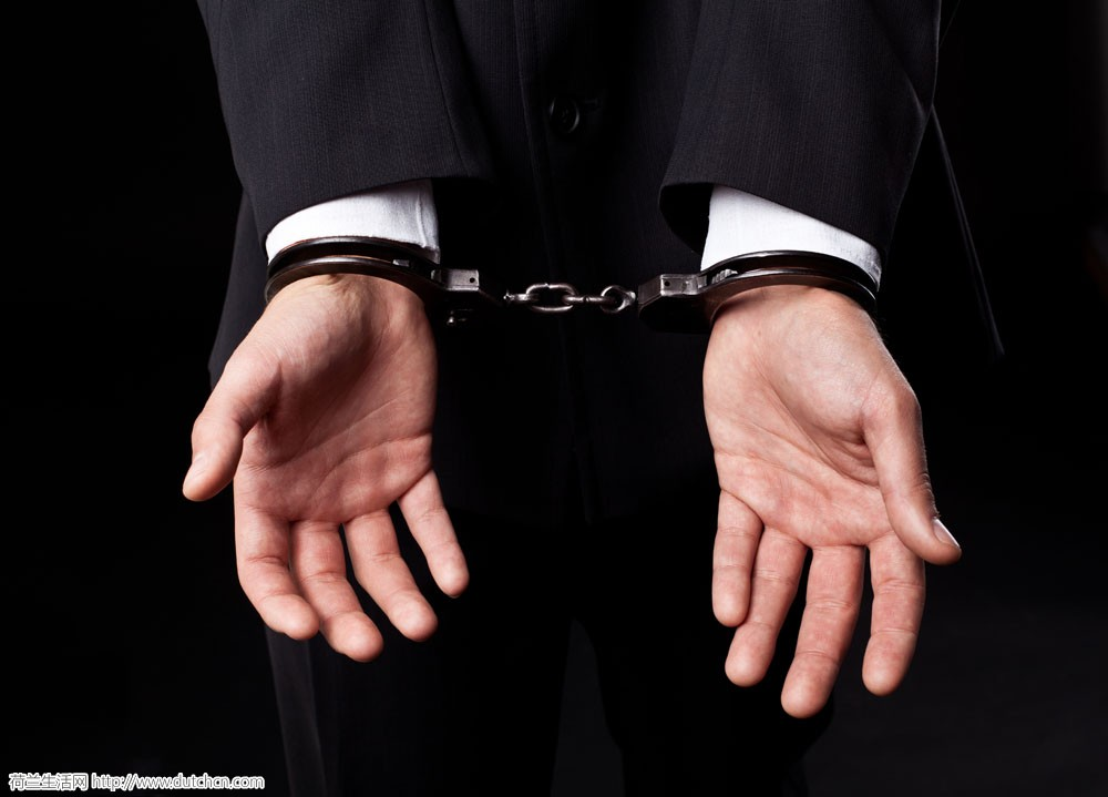 华人夫妇在荷兰机场被抓!判刑半年监禁!只因带了这些吃的?