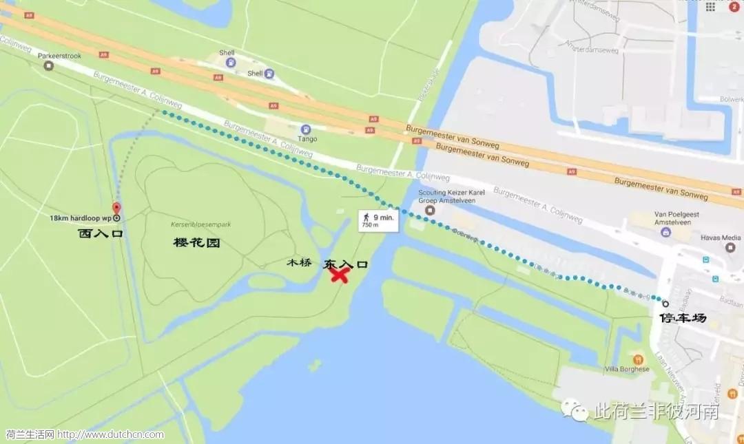 赏樱攻略 | 在荷兰除了去库肯霍夫,你还能去这里...