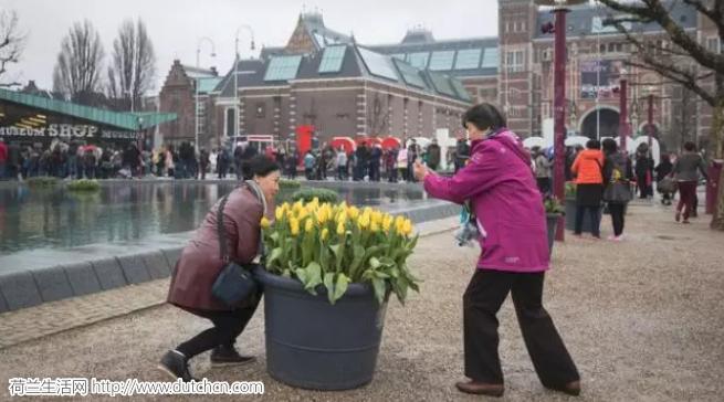 4000人中国土豪团今天横扫荷兰! 荷兰人:淡定,又不是第一次被扫…
