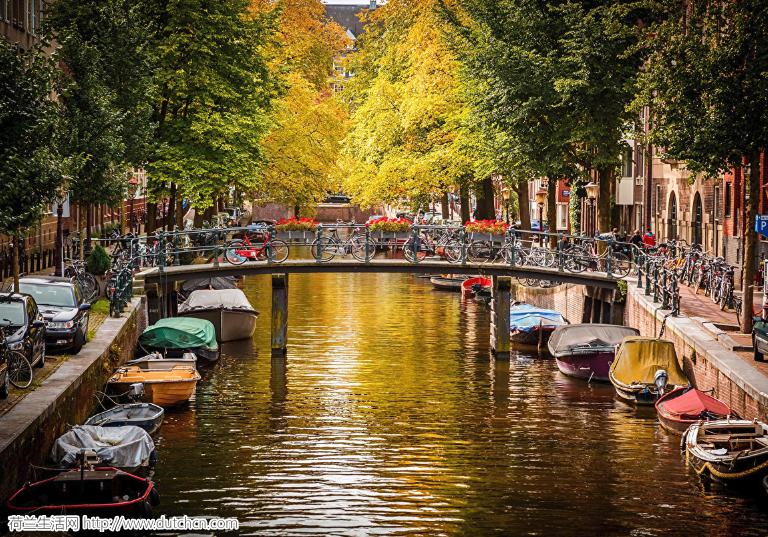 今天!荷兰在全世界排名上升10名!却惨遭中国暴力碾压…