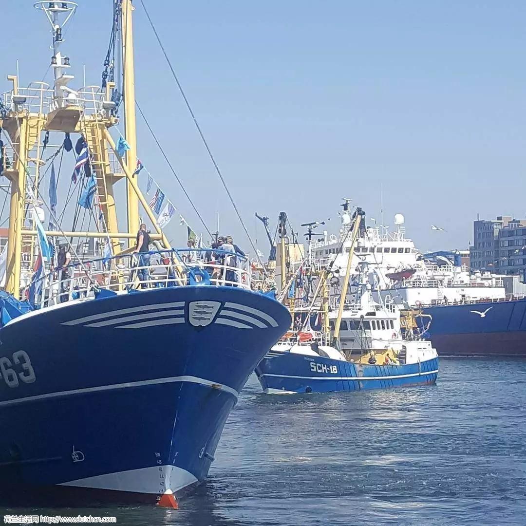 荷兰鲱鱼节:美味的生鲜与浓缩的历史,你不可错过的美味!