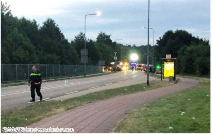 荷兰音乐节巴士撞人致1死3伤 肇事司机事后逃离现场