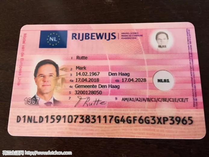 购买假荷兰驾照猖獗,竟然连首相吕特也敢山寨...