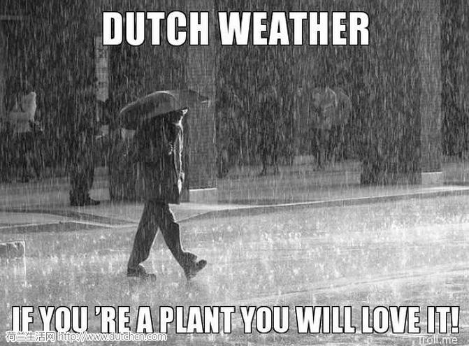 听说荷兰的夏天要过去了?超值福利:留不住的夏天,留得住的美味!