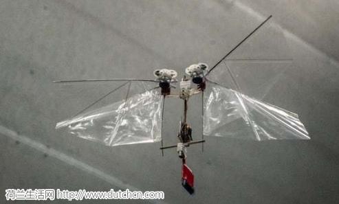 代尔夫特理工大学威武,研制出动作机敏的扑翼机器人