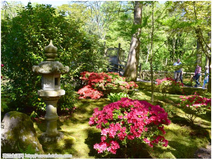 美如仙境的日本花园即将再次开放!仅2周,错过等明年