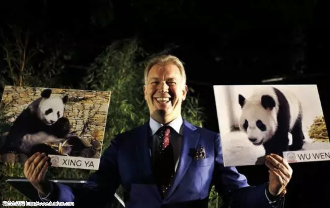 任性荷兰富豪刚引进了中国大熊猫,现在又把HEMA收购了…