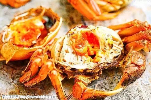 揭秘 |荷兰人为什么不吃大闸蟹?江苏师傅教你美味的正确打开方式!