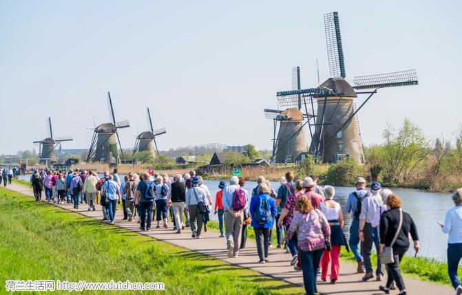 60个居民的风车村每年接待60万游客……居民表示不满