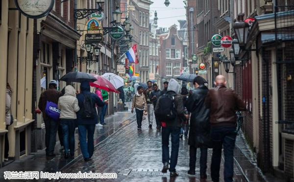 未来一周荷兰天气还是它原来的样子……但是可能有雪