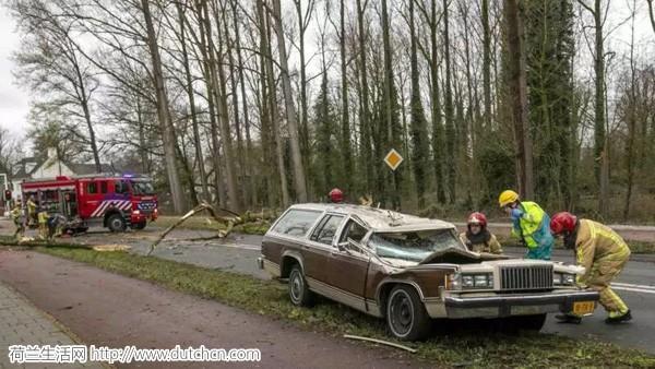 荷兰皇家气象局发布大风黄色预警,这妖风没完了是吧…