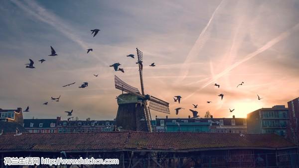近40%的荷兰人对荷兰的未来很悲观…这就是幸福感排名第五的国家?