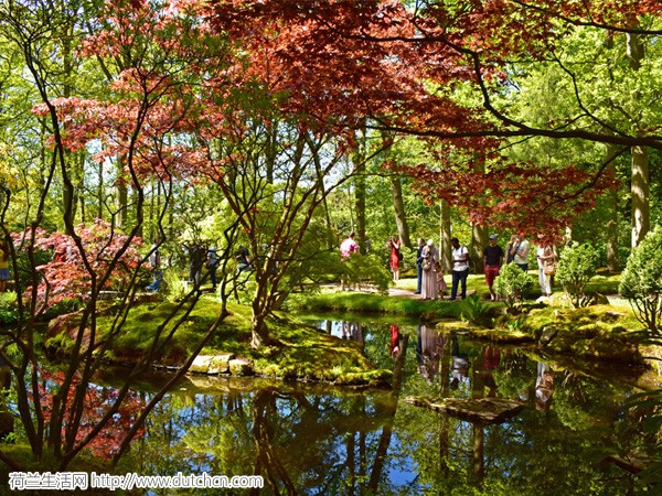 一年仅两次对外开外!免费参观海牙日本花园的时刻又来了