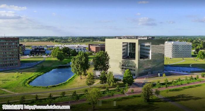 重磅!2020泰晤士世界大学排行出炉,荷兰第一易主,北大清华表现突出