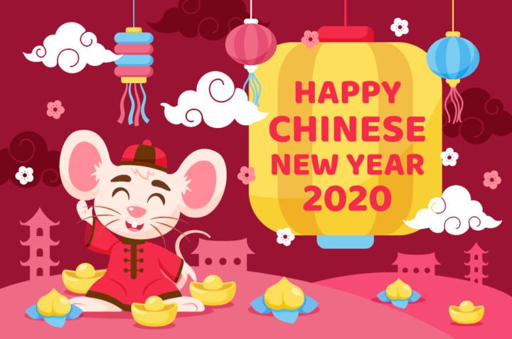 驻荷使馆提醒春节假期期间赴荷兰旅游的中国公民平安出行