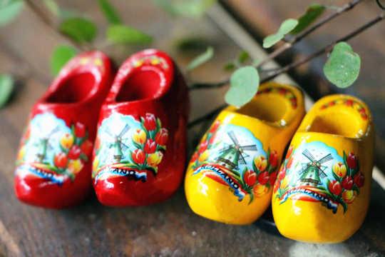 荷兰木鞋.jpg