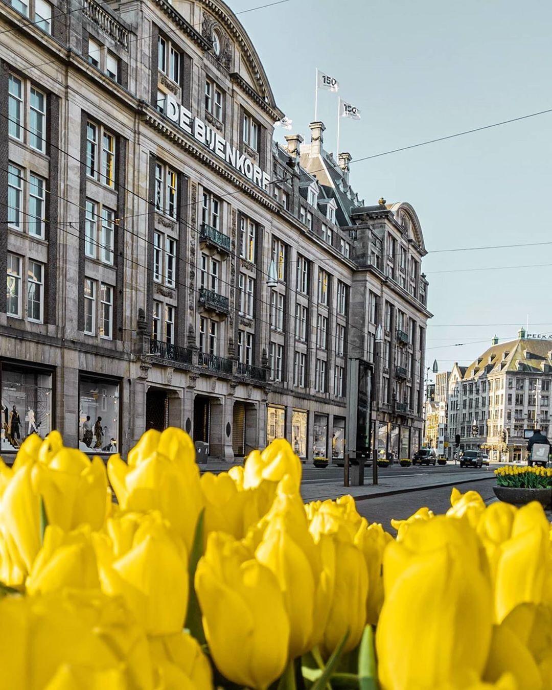 de Bijenkorf女王店阿姆办公室招聘市场营销及传播实习生