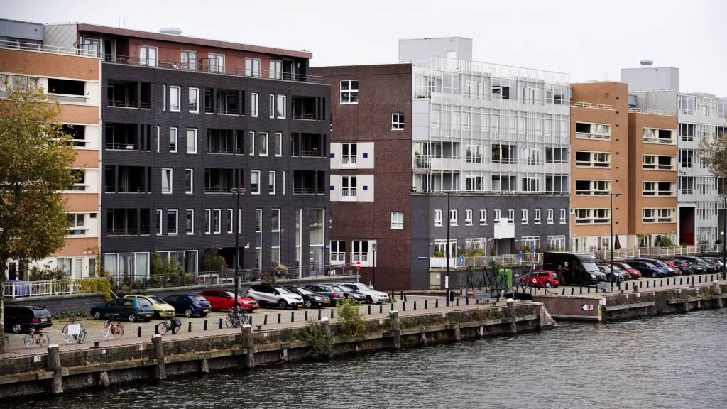 房住不炒!荷兰重拳打击房产投资市场,新买房前四年不得转租